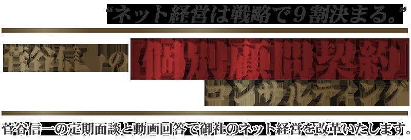 菅谷信一の個別顧問契約コンサルティングサービス